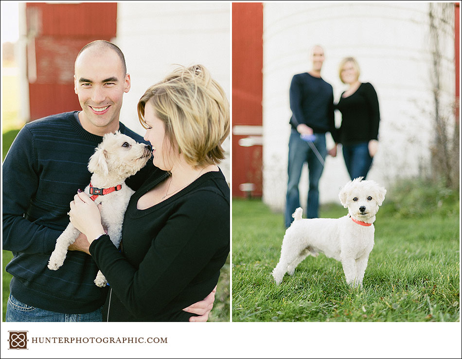 Our best friends - dogs from engagement sessions